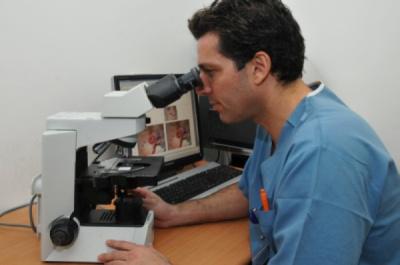 בדיקת שולי הגידול הסרטני בזמן ניתוח מוהס
